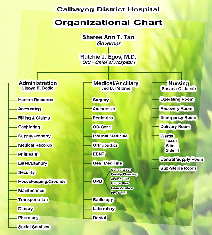 Organizational Chart  Calbayog District Hospital